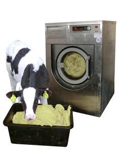 waschmaschine für pferdedecken